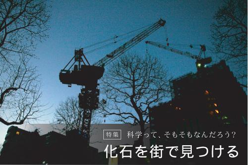 090119_top.jpg